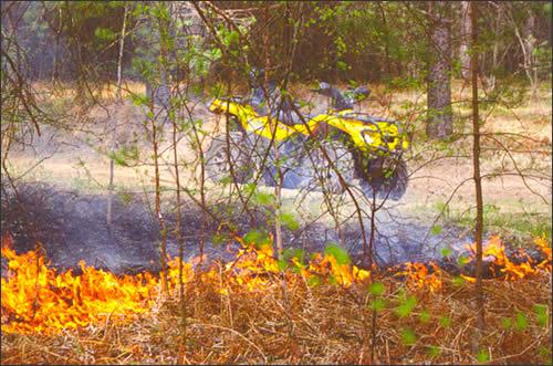 На пикнике не сожги лес и себя самого
